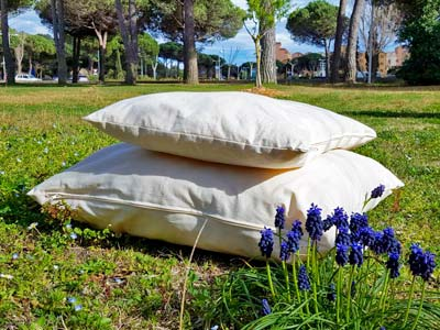 tous nos produits en laine bio du matelas la couette au oreillers et sommiers. Black Bedroom Furniture Sets. Home Design Ideas
